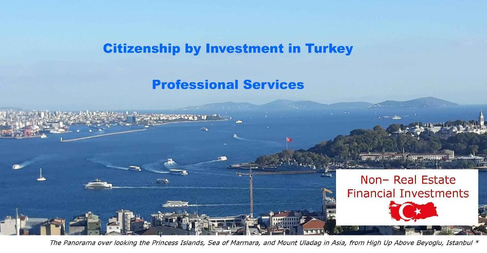 Turkey Citizenship by Investment CIP CBI- Professional Services for real Estate Investors and for Non-Real Estate Investors in Financial Products: Bank Deposits, Government Bonds, Venture Capital Funds...